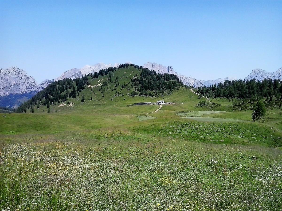 Anello di Festons dalla sella di Rioda (Val Pesarina – Sauris)