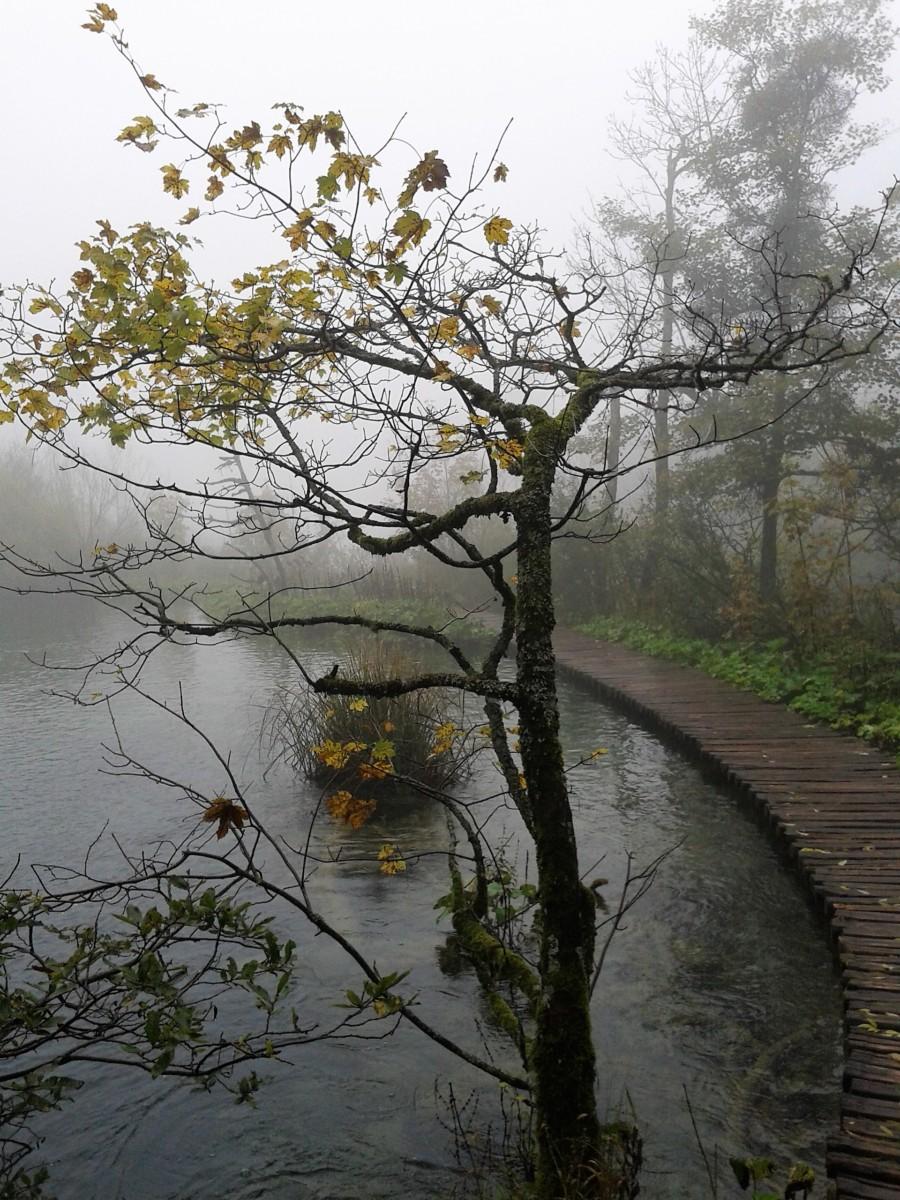 Parco nazionale laghi di Plitvice /Nacionalni park Plitvička Jezera (Croazia)